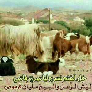 أبو عبدالله