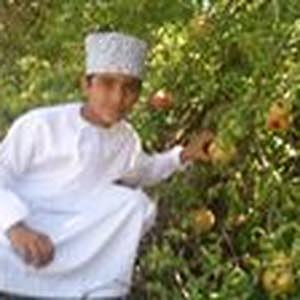 Ghalib Al Battashi