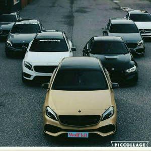 Wolf rente car Murad