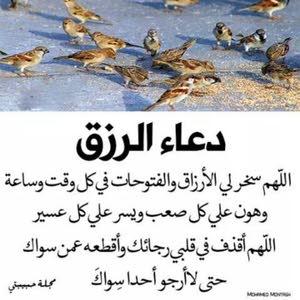 طارق El Refai