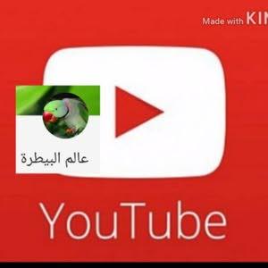 قناة عالم البيطرة باليوتيوب السليمي