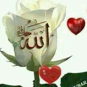 ابو الزهراء راضي عبد الموجود