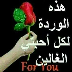 محمد الرسام