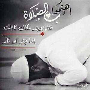 ابو محمد بن حامد