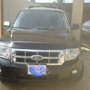 Used 2010 Ford Escape for sale at best price