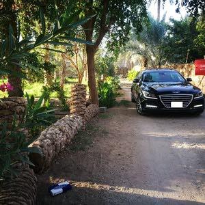 هيونداي جينسس V8 2015