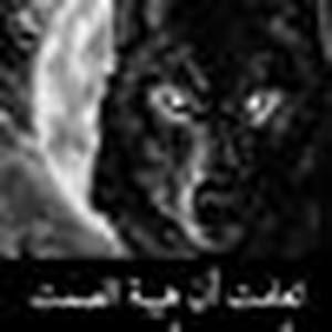 ابو العز