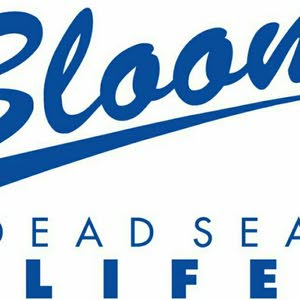 Bloom DeadSea DeadSea