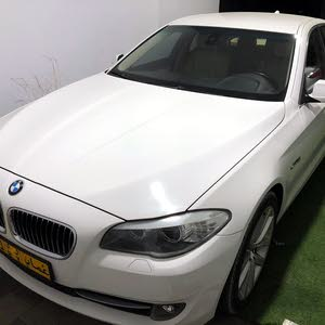 Gasoline Fuel/Power   BMW 520 2012