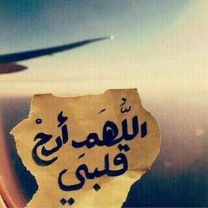 مشاري الصالحي
