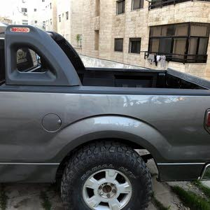 Ford F-150 2009 For sale - Grey color