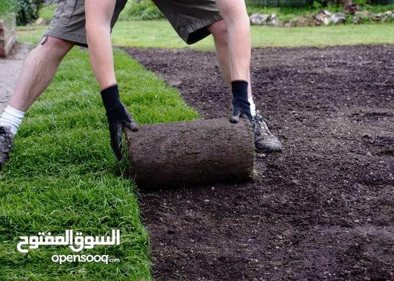 خدمات قص الاشجار تنظيف تنسيق الحدائق وبستنة وزراعة الاشجار والورود وشبكات الري كاملة - خبرة 25سنة