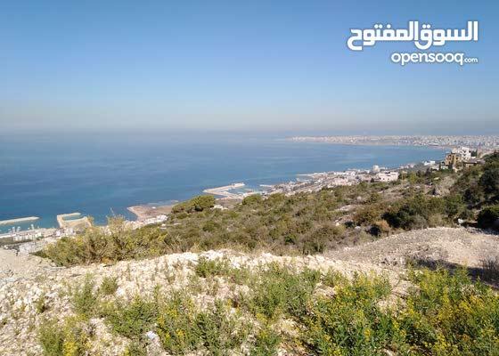 ارض في دده الكورة على البحرمساحة 1200م
