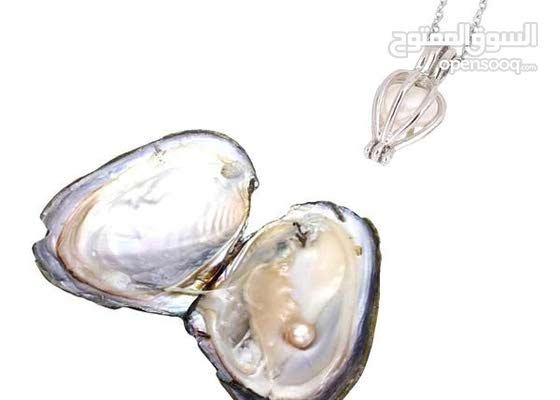 wish Pearl necklace قلاده الولو الطبيعي