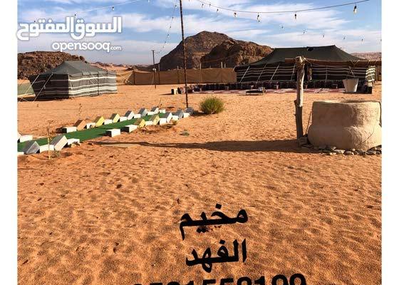 مخيم الفهد في تبوك للإيجار