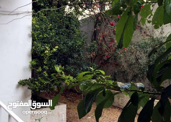 Furnished apartment in Hamra with cozy backyard/garden (Available in June)