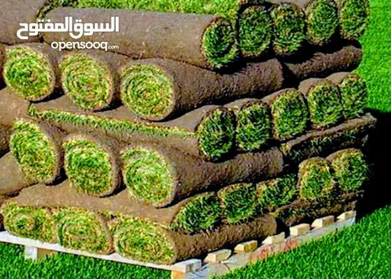 بيع العشب لأخضر gazon