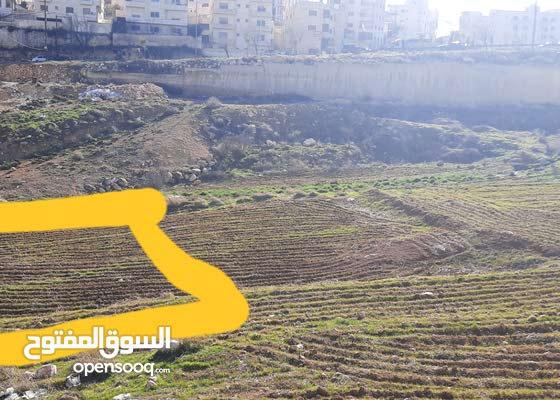 أرض إستثمارية للبيع 507 م الجبيهة خلف ديوان الصمادي تنظيمها ج