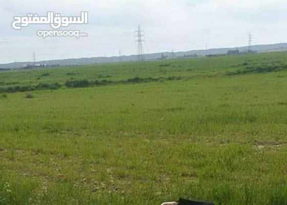 ارض زراعي للايجار في مندلي