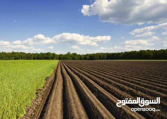 مشروع زراعي