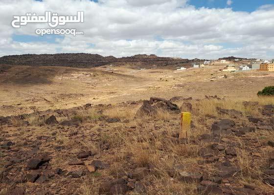 ارض للبيع في قرية تمنية مخطط القارية رقم 774