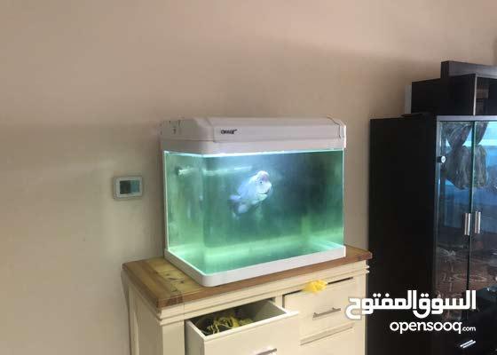 Camry Aquarium set 63cm length