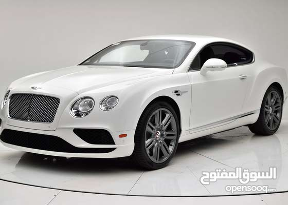 Bumper / Mesh / Grille for Bentley Continental GT 2016 - 2018