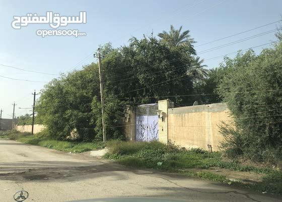 بستان للايجار في منطقة علي الصالح البيجية قرب المنصور محلة 404