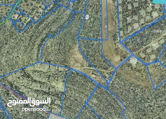 رام الله  مشروع اسكان