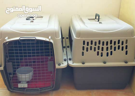 Travel Dog Crate for Small dog