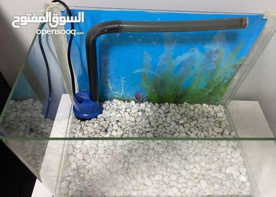 حوض سمك بحالة للجديد
