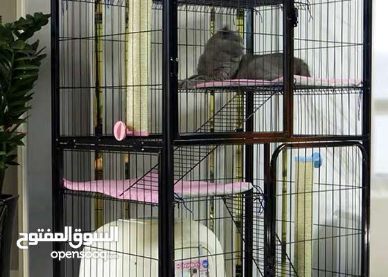 Last stock Offer/Limited Stock/Cat villa for sale/Mobile/3 Floors/Cage