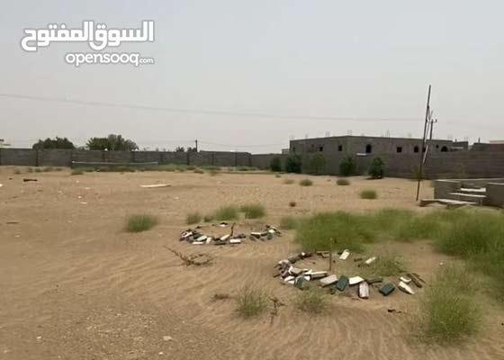 أرض للأجار في بيش