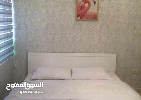 شقه للايجار اليومي و الاسبوعي بشارع الجامعه