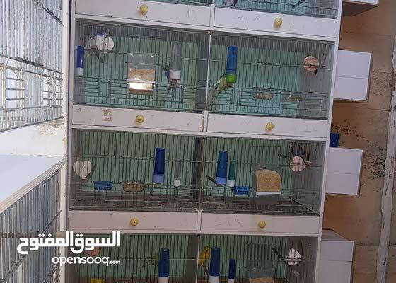 satılık kafes
