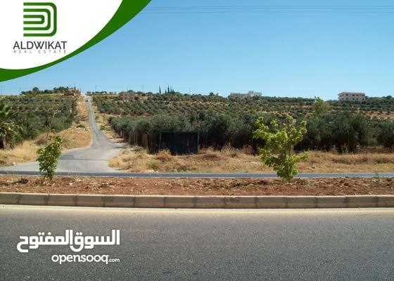ارض سكنية للبيع في اجمل مناطق طريق المطار (حجار النوابلسة) مساحة الارض 750 م