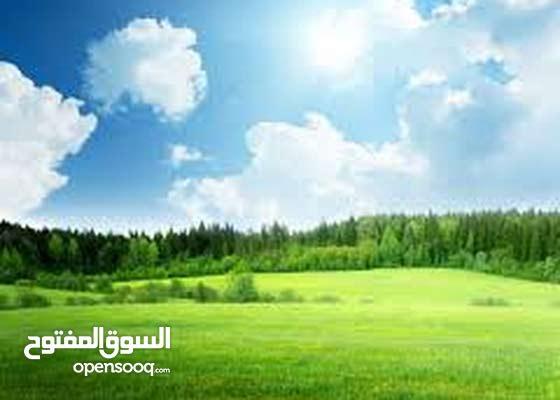 قطعة ارض ربوة عمان خلف كازية السلام للبيع