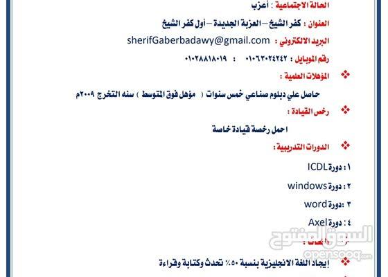 مصري متواجد في مصر أبحث عن عمل في الجزائر