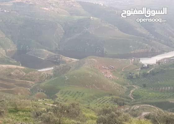 ارض مستويه مفروزه و مسنسله مطلة على سد الملك طلال