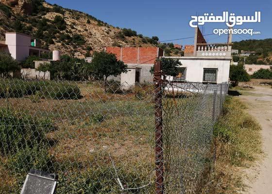 ارض ومنزل معها بئر للبيع / terrain a vendre