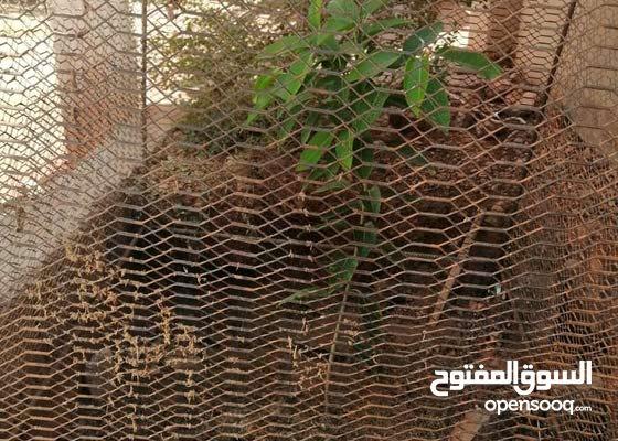 قطعة أرض بعد حسين
