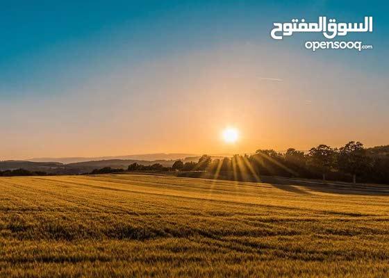 ارض للبيع مساحة 753 م للبيع في عبدون