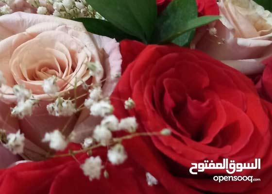 مدرسة اردنية متمكنة خبرة طويله 23 سنه
