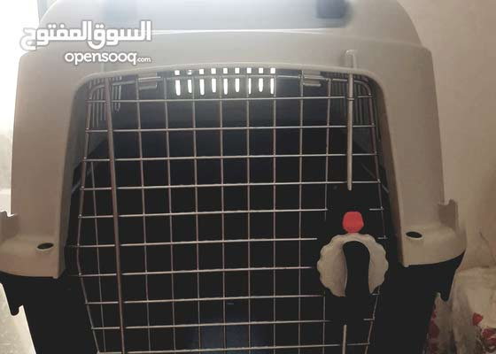 IATA approved pet carrier