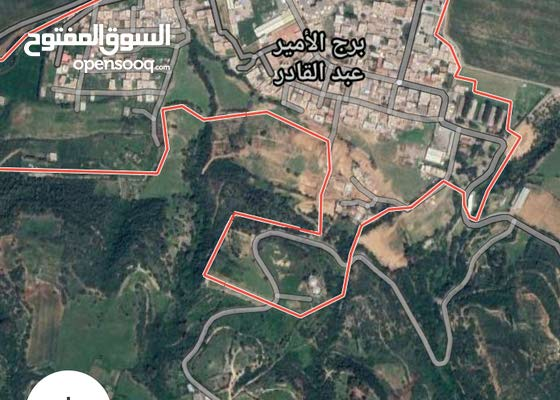 قطع الاراضي للبيع برج الامير عبد القادر موزاية