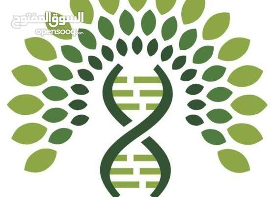 شجرة العائلة الطبية DNA