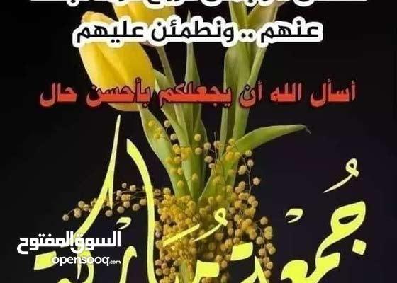 بلا زحمه اريد بيت للايجار حي الجهاد حي الحسين