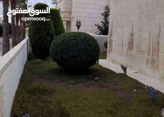 عبدون شارع السفارات فيلا مستقله فاخره منطقه فلل