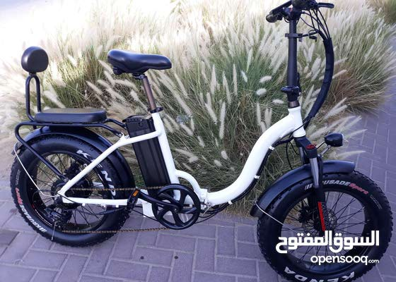 Original 1000w/48v Two Seater Fat Tire Folding Electric Bicycle