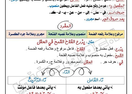 معلمة بمحمد بن زايد بايوظبي وضواحيها